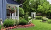 Lawn Doctor of Apple Valley: $25 for Mosquito-Control Treatment for 15,000 Square Feet at Lawn Doctor of Apple Valley ($150 Value)