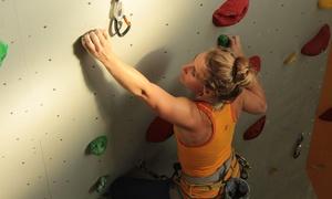 YOYO - Deine Kletterhalle - climb concept Dresden GmbH: 90 Min. Indoor-Kletter-Schnupperkurs bei YOYO – Deine Kletterhalle – climb concept Dresden GmbH (bis zu 56% sparen*)
