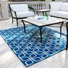 Blue and White Indoor/Outdoor Rug