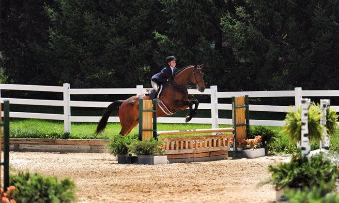 Cliffwood Farm - Richmond: One or Three 30-Minute Hunter-Jumper Riding Lessons at Cliffwood Farm (Up to 51% Off)