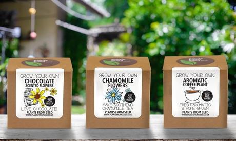1 o 2 kits de cultivo de plantas aromáticas