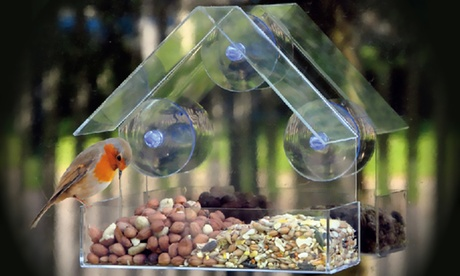 Evelots Clear Acrylic Window Bird Feeder With Suction Cups d27e9a63-6f23-4c14-be27-2310e7cf70ed