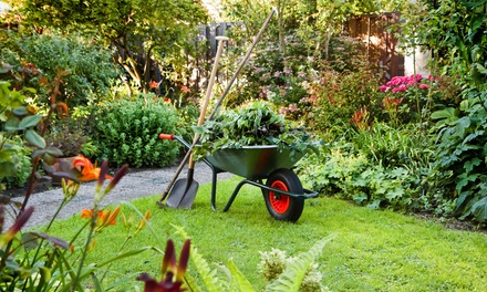 $25 for $40 Worth of Plants, Landscaping Products, Tools, and Gardening Supplies at Exterior Spaces