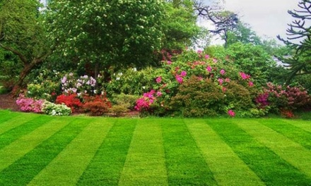 Lovely Lawns
