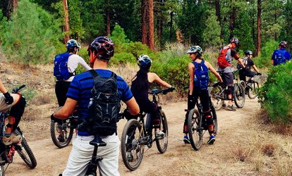 Three-Hour Guided Electric Bike Tour For Eight People from Eco Bike Adventures (Up to 34% Off)