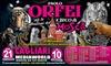 Circo Paolo Orfei, Cagliari