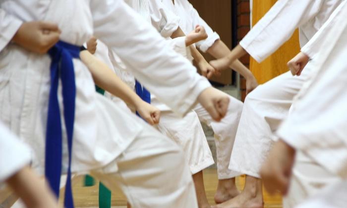 David Kang's Taekwondo Center - Samlarc: $38 for $150 Worth of Martial-Arts Lessons — David Kang's Taekwondo Center