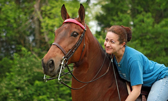 Showtime Saddlebreds and Academy - East Louisville: 3, 5, or 10 30-Minute Horseback-Riding Lessons at Showtime Saddlebreds and Academy (Up to 57% Off)