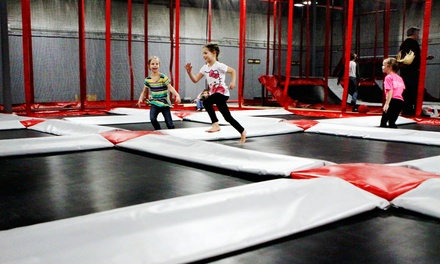 Trampoline Park Passes or Weekday Birthday Party for up to 10 at Rogue Air Park (50% Off). Four Options.
