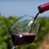 Half Off Wine Tour for Two in Woodinville