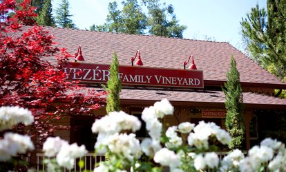 image for <strong>Wine Tasting</strong> for 2 or 4 with Optional Chocolate and Take-Home Bottles at Vezer Family Vineyard (Up to 54% Off)