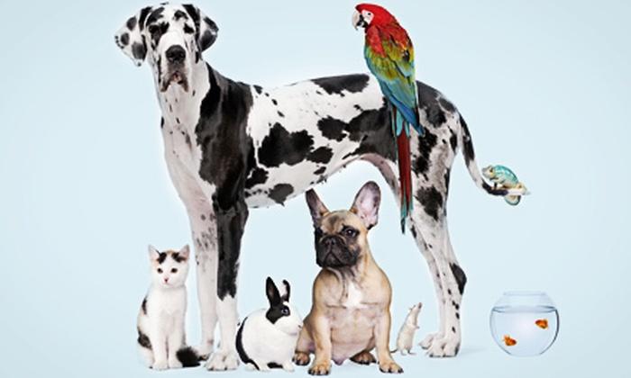 PetCareRx: $15 for $30 Worth of Pet Medicine and Supplies from PetCareRx