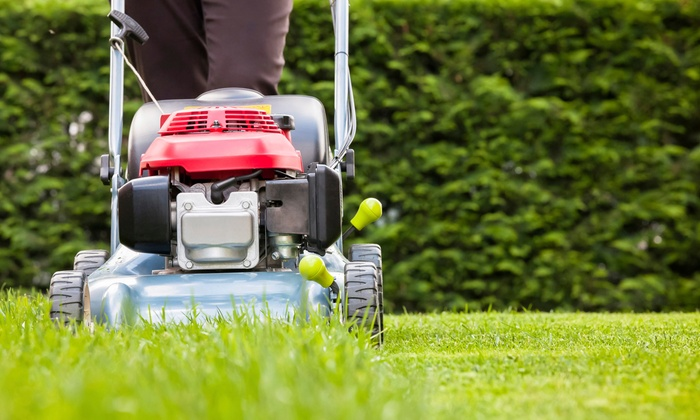 GrowScapes Lawns - Issaquah: $99 for Four Lawn Mowings with Trimming and Leaf Blowing from GrowScapes Lawns ($200 Value)