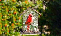 Embossed Cardinal Bird Feeder photo