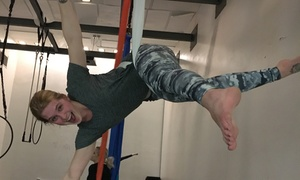 Iowa Circus Academy: Aerial Classes at Iowa Circus Academy (Up to 52% Off). Two Options Available.