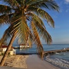 ✈ Adults-Only All-Incls Mangos Jamaica Stay w/Air from Travel By Jen