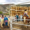 Up to 40%  Off Petting Zoo Admission at Gilchrist Farm