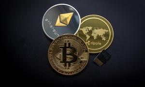 LTF Europe: Corso online per l'approfondimento del bitcoin e delle principali cryptovalute principali con LFT Europe (sconto 77%)