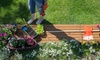 50% Off the Southern Spring Home & Garden Show