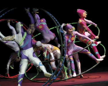 Golden Dragon Acrobats – Up to 31% Off Performance