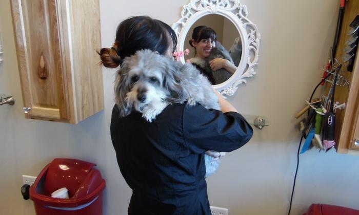 Doggie Decadence Pet Salon - Sandy: $40 for $50 Worth of Services — Doggie Decadence Pet Salon