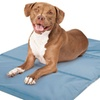 Pierce-Resistant Cooling Gel-Technology Pet Mat