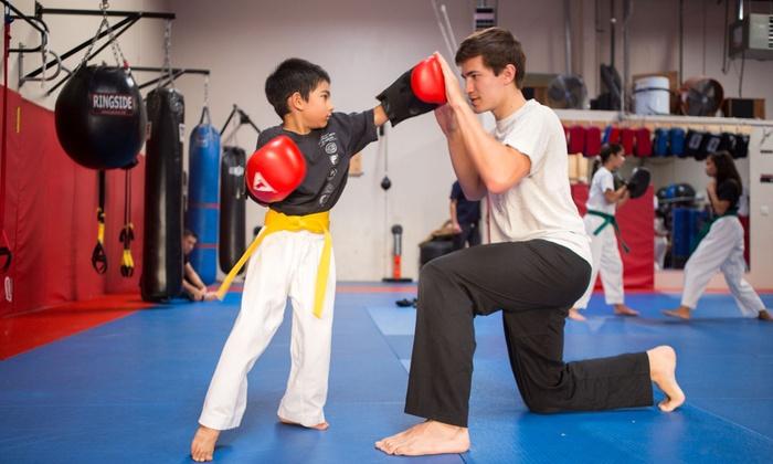 Bay Area Martial Arts Academy