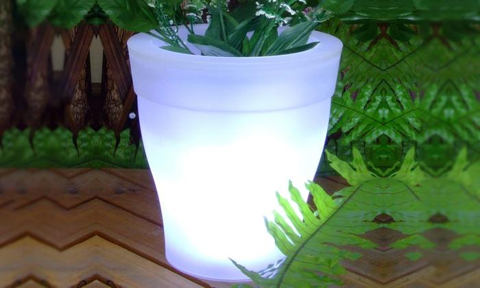 Vaso da fiori ad energia solare groupon for Fiori invernali da vaso