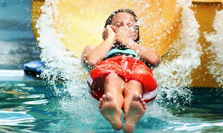 Water Park Admission, Zip Line Passes, and Sodas for Two or Four at The Beach (59% Off)