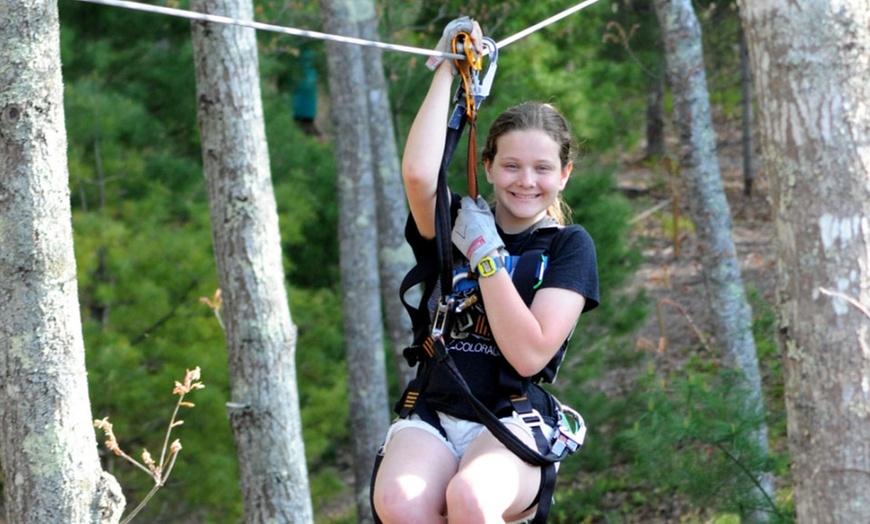 Zip Lining And Climbing Treetop Adventures Groupon
