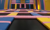 One-Hour Jumping Session for Adult with Toddler or for Up to Four at Tramp 2 Lean Sheffield