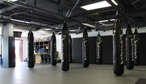 Power3 Academy: 10 Class Punch Card or One or Three Months of Martial Arts or Fitness Classes at Power3 Academy (Up to 84% Off)