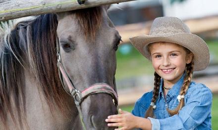 Kolonie w siodle: 7-dniowy obóz jeździecki z atrakcjami za 899 zł z firmą Martafit (zamiast 1300 zł)