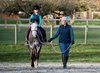 Up to 37% Off Horseback Riding Lessons at Footnote Farm