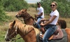 Up to 39% Off Horseback Trail Ride from Texas Border Tours