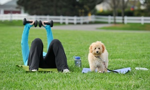 Central Ohio Thank Dog Bootcamp, LLC: Two or Four Owner-and-Pet Fitness Boot Camp Sessions at Central Ohio Thank Dog Bootcamp, LLC (51% Off)