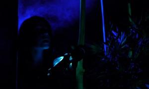 Tohubohu sur saône: Pack Laser game avec 1 session de 15 min pour 4, 6, 8 ou 10 personnes dès 14 € chez Tohubohu sur Saône
