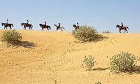 45-Minute Riding Lesson and Two-Hour Desert Hack with Al Jumooh Equestrian Club (27% Off)