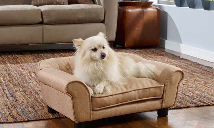 Enchanted Home Pet Sofas For Small Dogs ...
