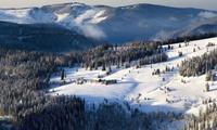 Schwarzwald: 2-5 Nächte für 2 Personen inkl. HP, Kaffee & Kuchen sowie Weinverkostung im Hotel Pflug