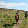 90-Minute Wicklow Riding Adventure