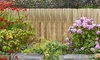 Bamboo Slat Fence Screening in Choice of Size