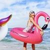 Flotador flamenco o unicornio
