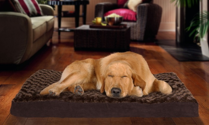Faux Fur/Suede or Terry/Suede Orthopedic Pet Beds: Faux Fur/Suede or Terry/Suede Orthopedic Pet Beds from $16.99-$34.99. Multiple Sizes and Styles Available.