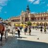 ✈ Cracovie et Auschwitz : 2 ou 3 nuits avec petit-déjeuner et vols A/R