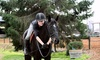 Crescent Stables - Delta: Two Private 45-Minute Horseback-Riding Lessons at Crescent Stables (Up to 50% Off)