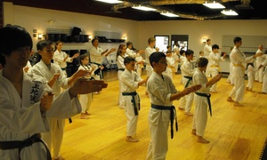 Toma Dojo - True Karate: $20 for One Month of Unlimited Classes at Toma Dojo - True Karate ($90 Value)