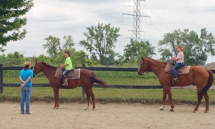 Nova Quarter Horses - Mokena: $99 for Five Group Horseback-Riding Lessons for One Person at Nova Quarter Horses (Up to $185 Value)