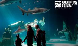 Biglietti Acquario di Genova : Acquario di Genova: ingresso all' Acquario, alla Biosfera e al Bigo panoramico (sconto 29%)