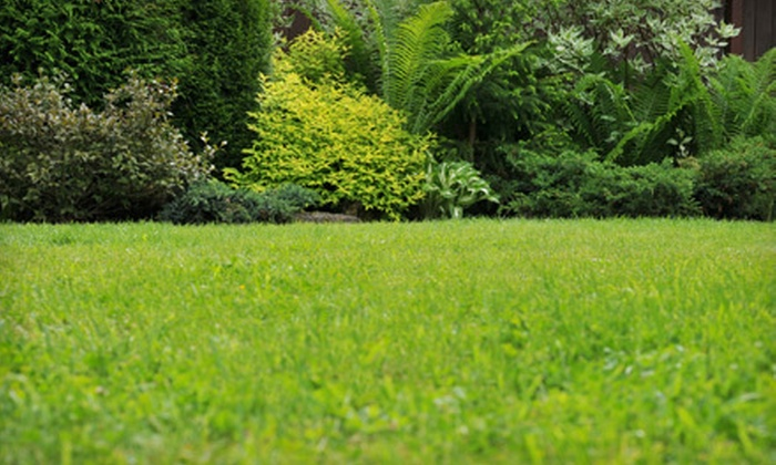 Double Eagle Professional Turf Management - Davidson: Lawn Overseeding & Fertilization, Lawn Aeration, or Both from Double Eagle Professional Turf Management (Up to 58% Off)
